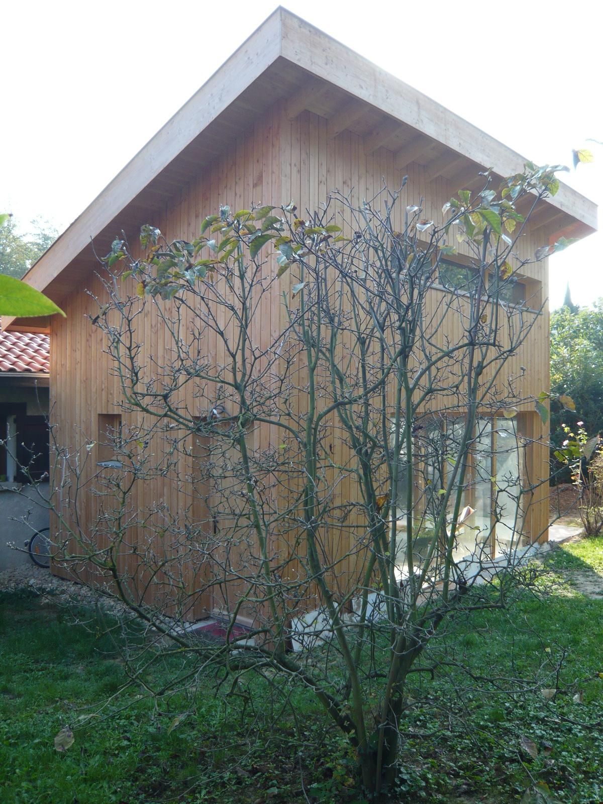 extension-bois-toit-1-pan