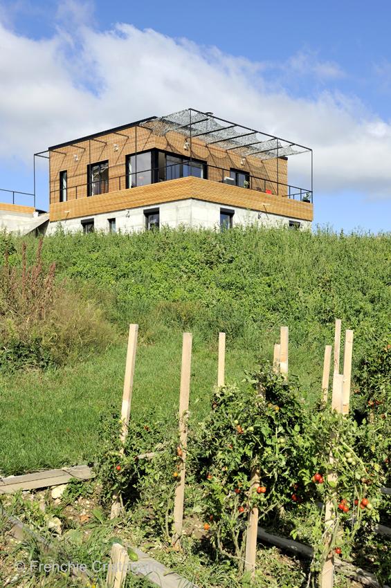 maison-contemporaine-bois-isere